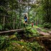 Letošní Trail Running Cup nabídne hned tři přírodní maratony